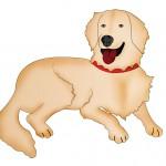 Dog BG